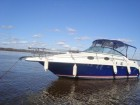 Катер sea ray 250 sundancer